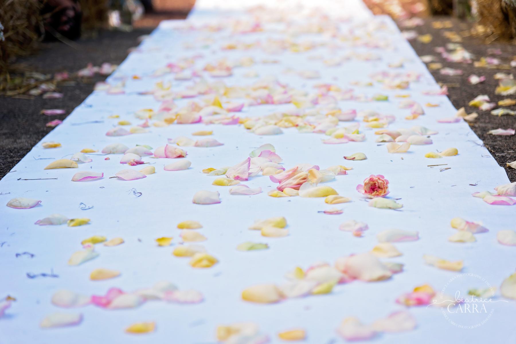 mariage champetre et chic au catalpa Roanne. Béatrice Carra Photographe Loire-Rhone-Auvergne039